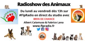 Radio show des aniaux bientot